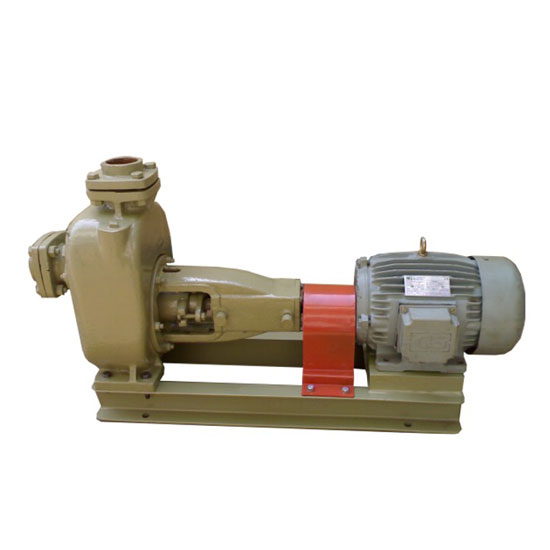 Mud / Sewage Pumps