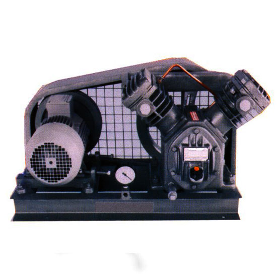 Piston Type Dry Vacuum Pumps
